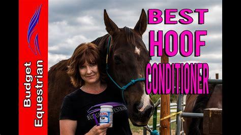 hoof conditioner horses budget