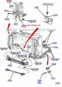 Brand New Oem Transmission Fluid Oil Cooling Tube Ford