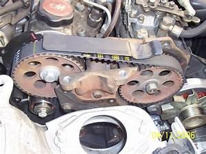 Calage De Distribution : calage distribution renault 19 diesel ~ Gottalentnigeria.com Avis de Voitures