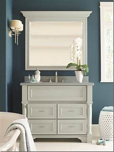 Makeover my vanity omega bathroom cabinetry pinterest for Pinterest bathroom vanity