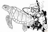 Scuba Diver Coloring Sea Turtle Pages Turtles Printable Drawing Navy Seal Sketch Diving Template Clipart sketch template