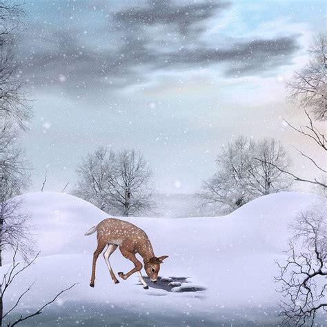 cute winter background  deer gallery yopriceville