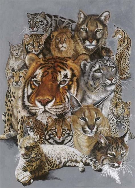 big cats wall art big cat art prints wild cat family