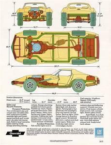 C3 Vette Series  1975 Corvette