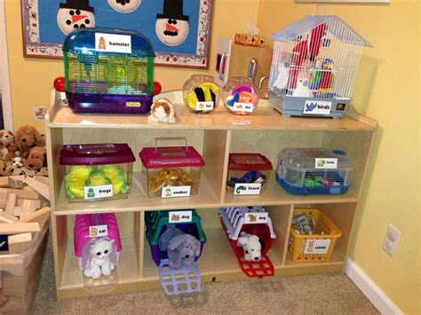 pet ideas for preschoolers preschool pet shop home corner ideas pets 13072