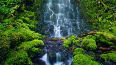 wallpaper landscape waterfall jungle stream