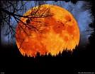 Image result for Harvest Moon Images Free