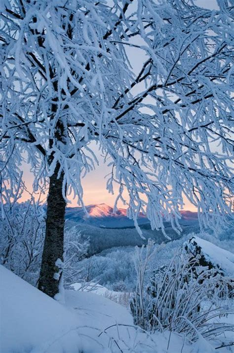 photo de chambre a coucher le paysage d 39 hiver en 80 images magnifiques