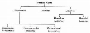 Human Wants: Elements, Importance and Classification ...