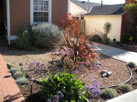 drought resistant landscaping make simple fresh and modern drought tolerant landscaping midcityeast