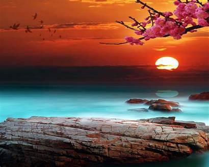 Background Desktop Sunset Bright Sky Wallpapers13 Wallpapers