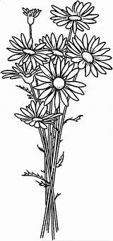 Daisy Coloring Flower Arrangement Pages Flowers Drawing Colouring Sheets Simple Printable Spring Nature Designs sketch template