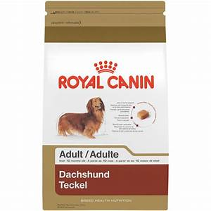Royal Canin Bulldog : royal canin breed health nutrition dachshund adult dry dog food ebay ~ Frokenaadalensverden.com Haus und Dekorationen