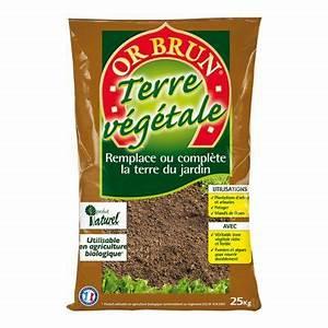 Ou Trouver De La Terre Végétale : terre v g tale or brun 25kg castorama ~ Premium-room.com Idées de Décoration