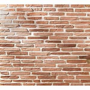 Leroy Merlin Plaquette De Parement : exceptionnel plaquette de parement exterieur brique rouge ~ Dailycaller-alerts.com Idées de Décoration