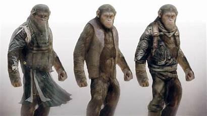 Apes Planet Concept Mtv