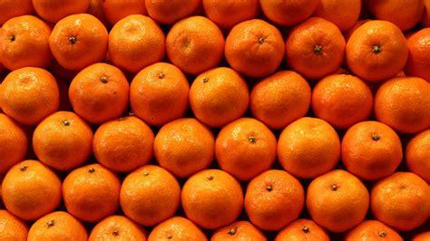 orangen geleeterrine mit chili und pistazien zdfmediathek
