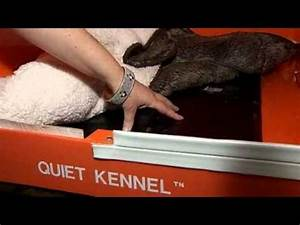 Quiet kennel hushes bonfire bangs youtube for How to soundproof a dog kennel