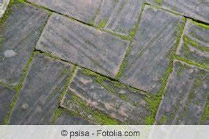 Algen Hauswand Entfernen Hausmittel : terrassenplatten reinigen moos und algen von terrasse entfernen ~ Frokenaadalensverden.com Haus und Dekorationen