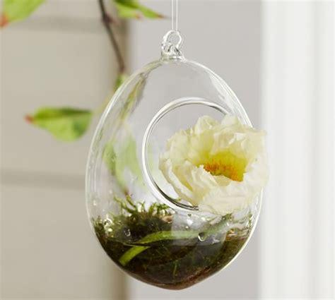 Mini Terrarium Glas by Mini Hanging Glass Terrarium Pottery Barn