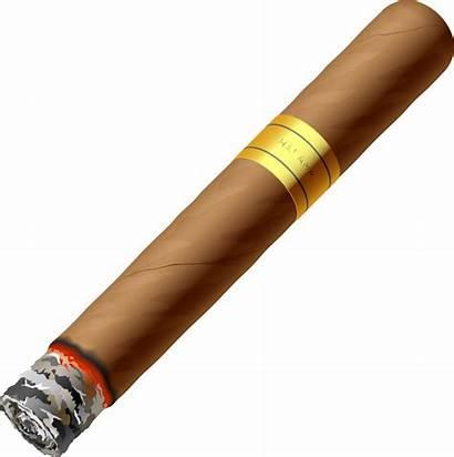 Cigar Cigarette Cartoon Tobacco Vector Burning Clipart
