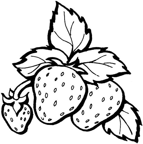 Coloring Strawberry by Strawberry And Cherry Coloring Page Coloring Pages