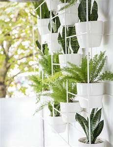 Plante Verte Salle De Bain : 1001 id es pour votre plante pour salle de bain ambiances spa et zen ~ Melissatoandfro.com Idées de Décoration