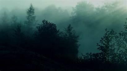 Teal Wallpapers Dark Forest Pixelstalk