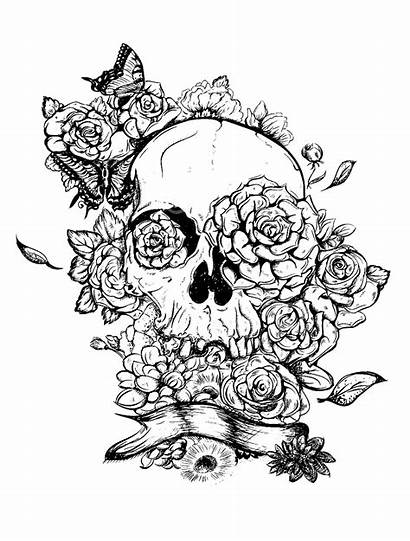 Skull Roses Coloring Adult Rose Tattoo Pages