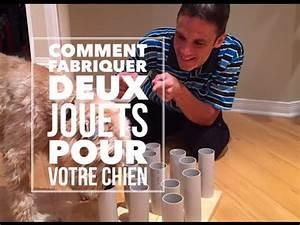 Video Pour Chien : diy comment fabriquer deux jouets pour votre chien youtube ~ Medecine-chirurgie-esthetiques.com Avis de Voitures