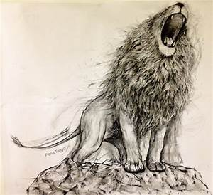 Cool Lion Roaring Drawing