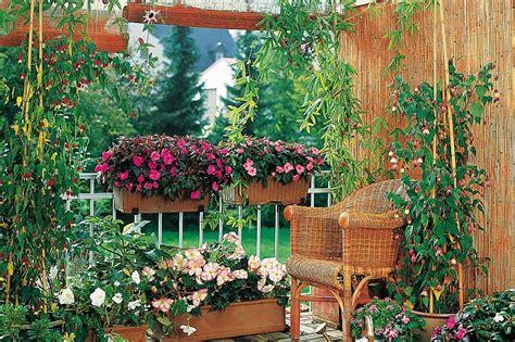vasi fiori vasi per piante le soluzioni per le fioriture in vaso