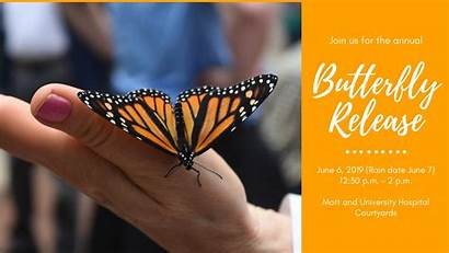 Butterfly Release Fun Medicine Flying Michigan Patients