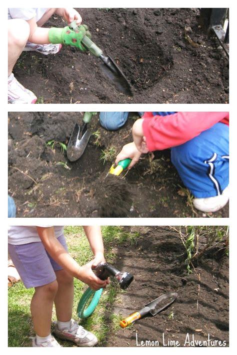 school garden learning activities for preschoolers 552 | Growing a Preschool Garden