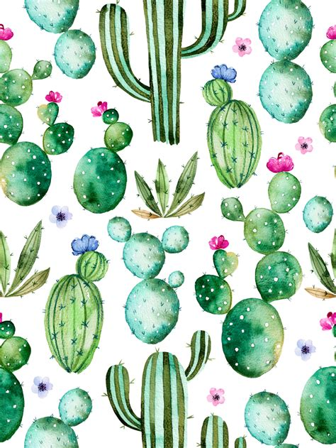 cactus green plant backdrop photogrpahy backdrops floral