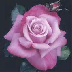 miniature tea roses barbra streisand hybrid tea edmunds 39 roses