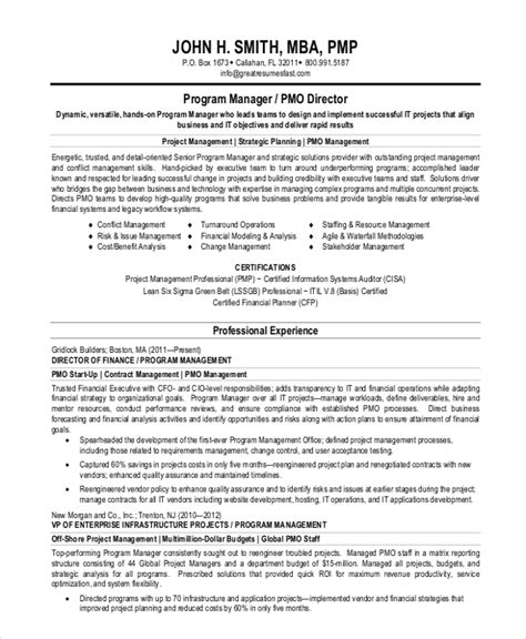 Professional Summary For Project Manager resumes for project managers name