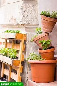 Grünpflanzen Für Innen : die besten 25 gestapelte blument pfe ideen auf pinterest ~ Eleganceandgraceweddings.com Haus und Dekorationen