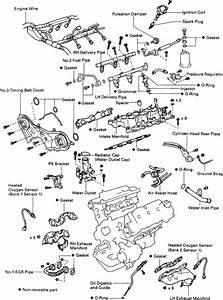 Vacuum Diagram Lexus Es300 Acis  Lexus  Auto Wiring Diagram