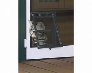 Fenster Kaufen Bei Hornbach : katzen klappe f r insektenschutz t ren plus expert schwarz 20x25 cm bei hornbach kaufen ~ Watch28wear.com Haus und Dekorationen