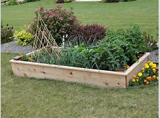 Time For Your Vegetable Garden Preparation Organic