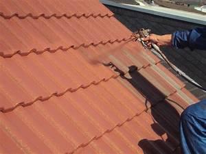 Eternit Dach Reinigen Streichen : dachbeschichtungen eternit ton dachziegel schiefer ~ Lizthompson.info Haus und Dekorationen