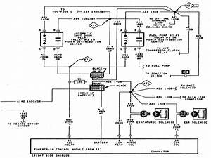 2004 Dodge Neon Fuel Pump Wiring Diagram