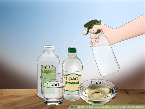ways  kill cockroaches  ants  pesticide wikihow