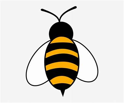 Bee Clip Bumble Clipart Transparent Pngkey