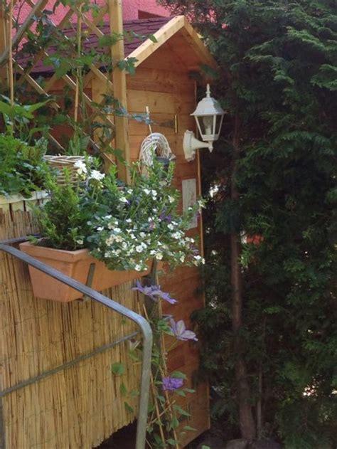 Garten 'der Minigarten'  Schlüsselblume Zimmerschau