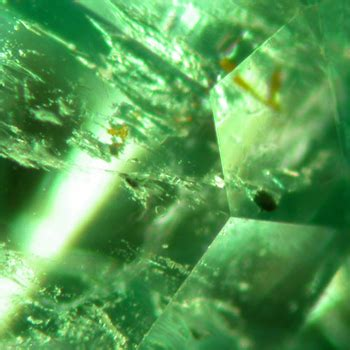 emerald inclusionsonline gemological expertise