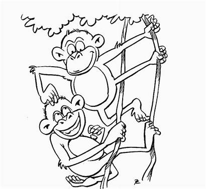 Zoo Coloring Animals Pages Monkey Drawing Animal