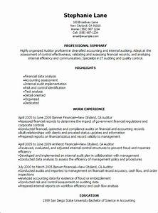 1 auditor resume templates try them now myperfectresume With auditor resume