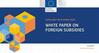 Paper Foreign Eurecca Commission European Levelling Subsidies